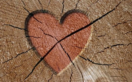Corazón en un tronco