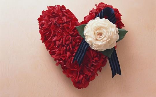 Flores para San Valentín HD