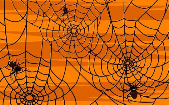 Telas de Araña Fondos Halloween
