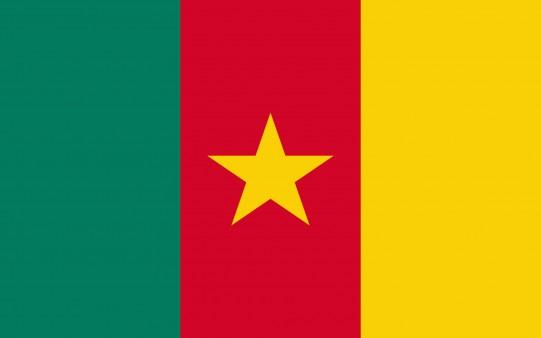 Fondo de Pantalla Bandera de Camerún
